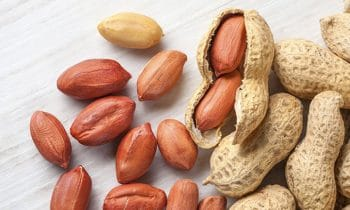 Peanut Allergy Cured In Majority Of Children In Life-Changing Immunotherapy Trial