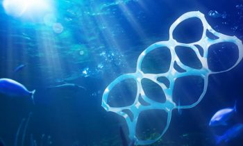Over 200 Countries Sign Resolution To Stop Plastic Waste In The Ocean
