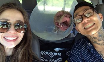Couple Drives 1,000 Miles To Reunite With Dog Stolen By and#039;Monstersand#039;